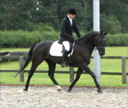 Westoak Eclaire at Moulton College dressage Competition